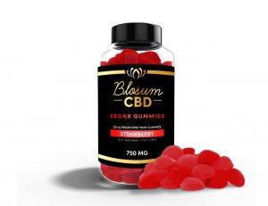 CBD Vegan Gummies 25mg