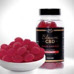CBD Gummies  Organic Vegan <br></noscript><img class=