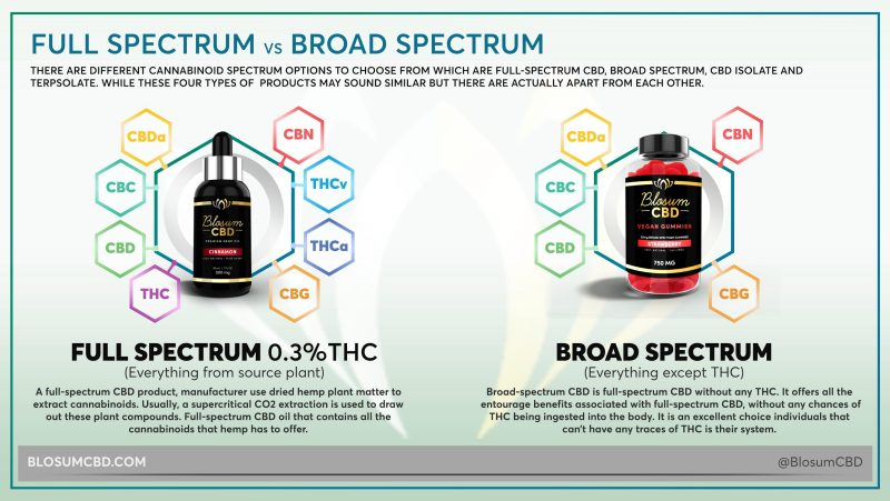 FULL-SPECTRUM VS BROAD-SPECTRUM CBD