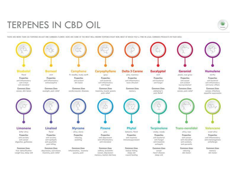 terpentenes in CBD oil