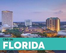 BlosumCBD Florida State