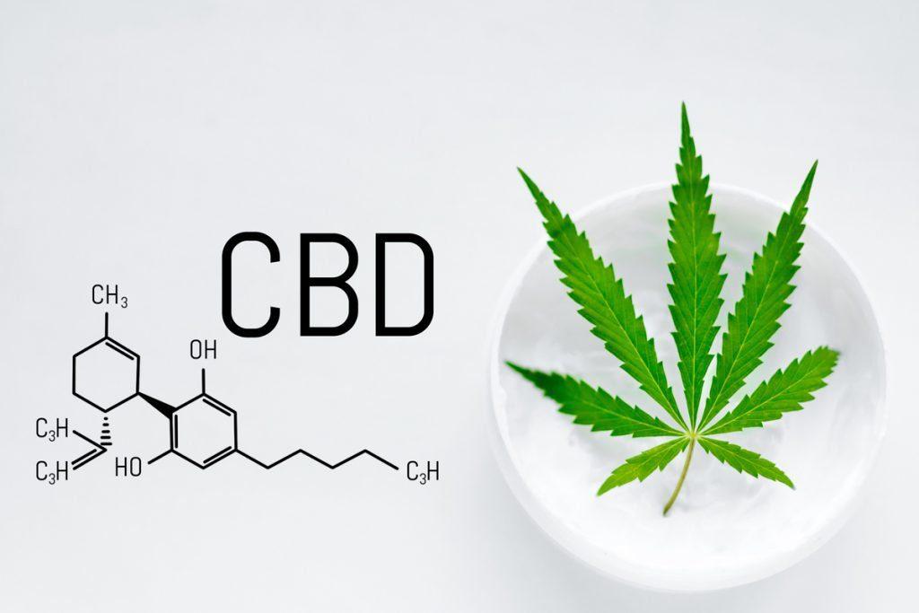 CBD Cream Reviews