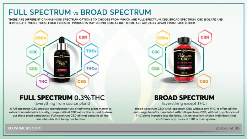 FULL-SPECTRUM VS BROAD-SPECTRUM CBD