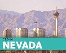 BlosumCBD Nevada State