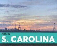 BlosumCBD South Carolina State