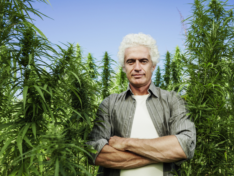 What Does it Mean for CBD Products to Be USDA Certified Organic