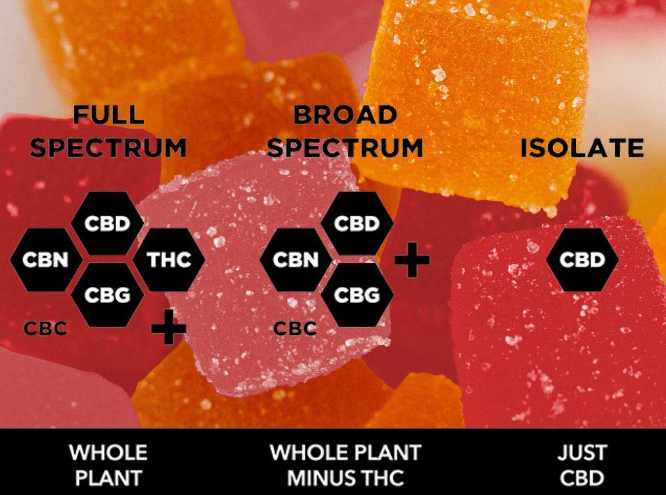 Full-spectrum vs. Broad-spectrum Gummies