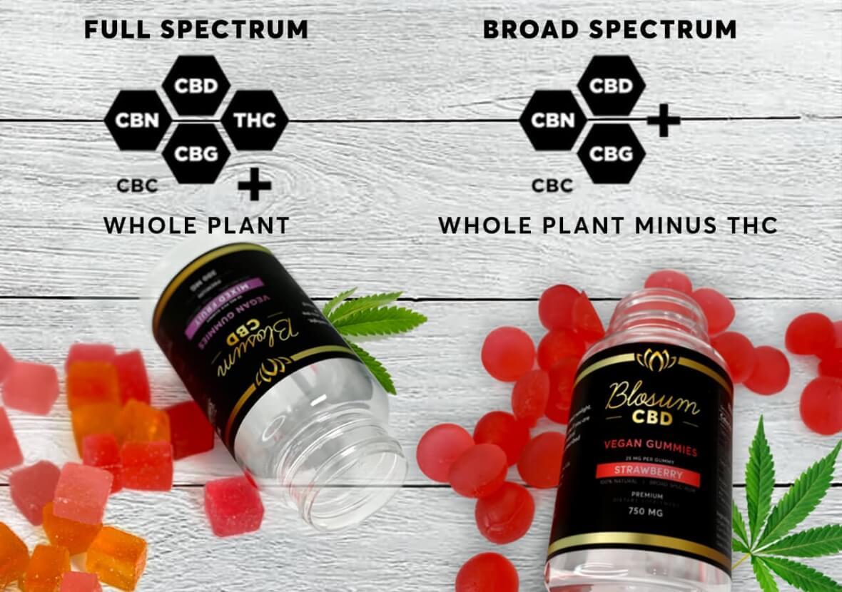 BlosumCBD gummies products