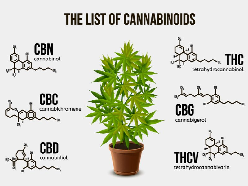 List of Cannabinoids including Phytocannabinoids