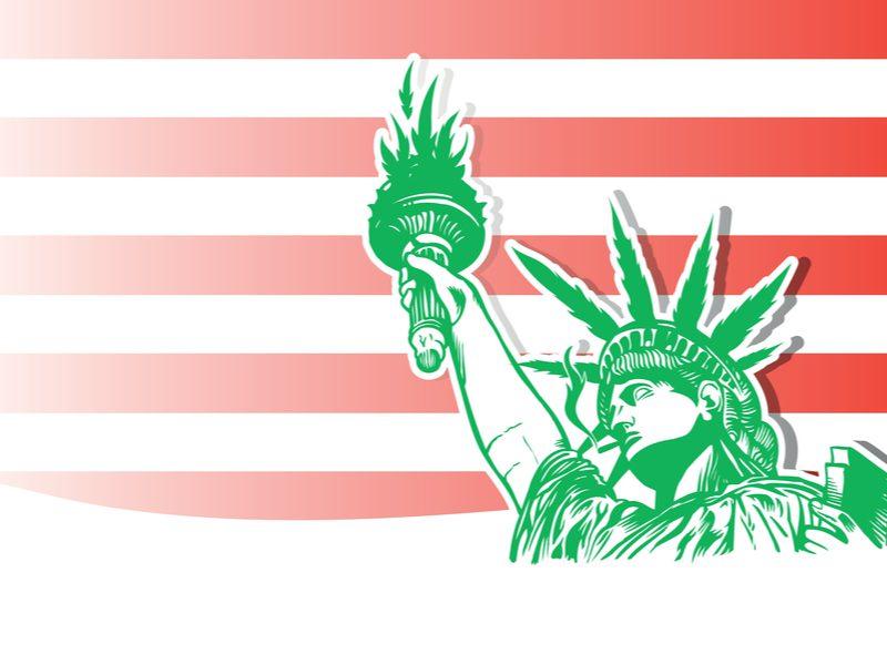 NEW YORK'S LEGALIZATION ON Cannabidiol OIL