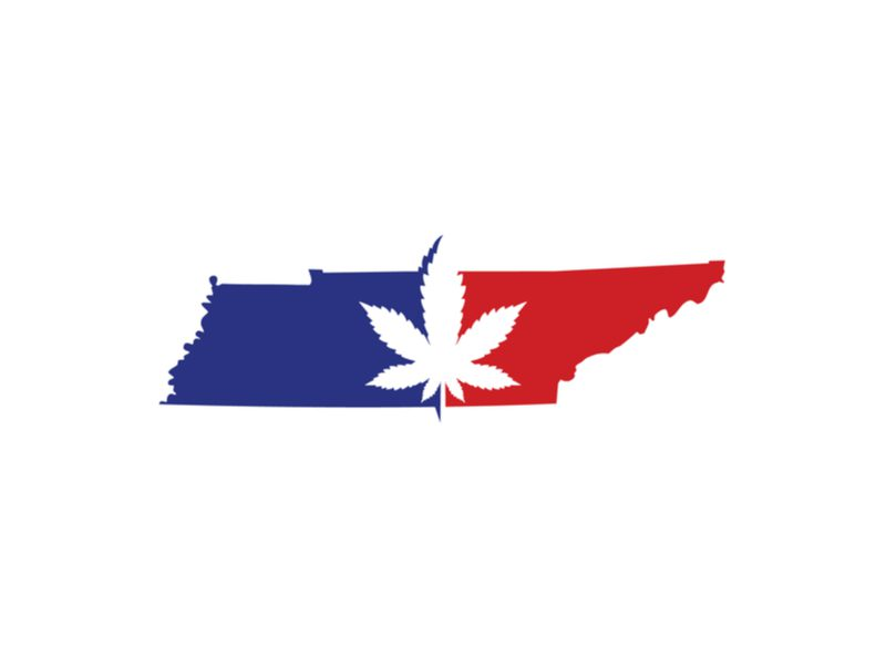 Where to Buy CBD Oil in Tennessee